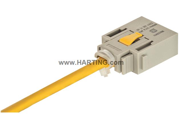 Han RJ45 module, male for patch cords